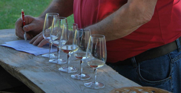 The Academie du Cep promotes individual expertise in wine tasting